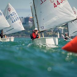 2017 Junior Sail Auckland