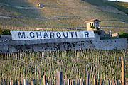 vineyard hut domaine m chapoutier hermitage rhone france