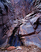 Trinity Canyon, Colorado River mile 91.5, Trinity Creek, Grand Canyon National Park, Arizona, USA; 5 May 2008; Pentax 67II, 105mm lens, Velvia 100