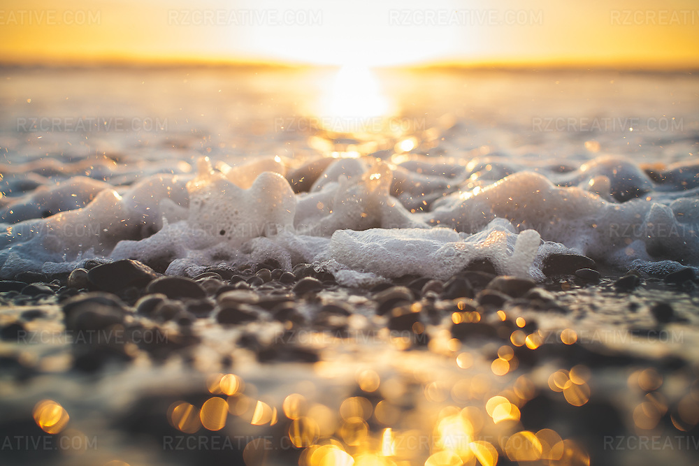 Shallow depth of feild picture of the waters edge at sunset.