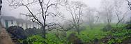 Vietnam Images-Panoramic landscape-nature-Sapa Hoàng thế Nhiệm Phong cảnh Sapa