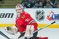 KELOWNA, CANADA - APRIL 8: Cole Kehler #31 of the Portland Winterhawks defends the net against the Kelowna Rockets on April 8, 2017 at Prospera Place in Kelowna, British Columbia, Canada.  (Photo by Marissa Baecker/Shoot the Breeze)  *** Local Caption ***