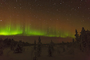 Norhern Lights over the Finnish forest to the northwest of the small town of Inari. The spikes indicate a moving, active aurora, which was visible with the naked eye.
