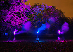 Trees, gardens and a pond are illuminated in the Enchanted Woodland at Syon Park in London, Saturday, 23rd November 2013. The woodland is open for walkers during the festive season to enjoy a early evening walk through the  landscaped gardens.<br /> Picture by Peter Kollanyi / i-Images