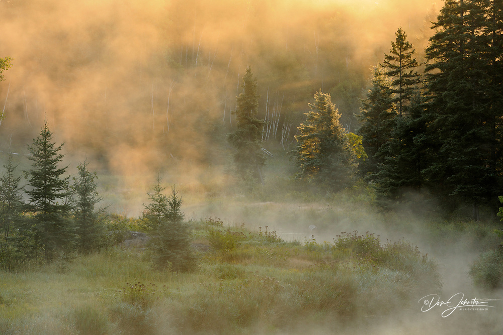 Morning mists on Junction Creek, Greater Sudbury (Lively), Ontario, Canada