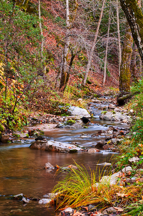The Nacimiento River, Los Padres National Forest, California