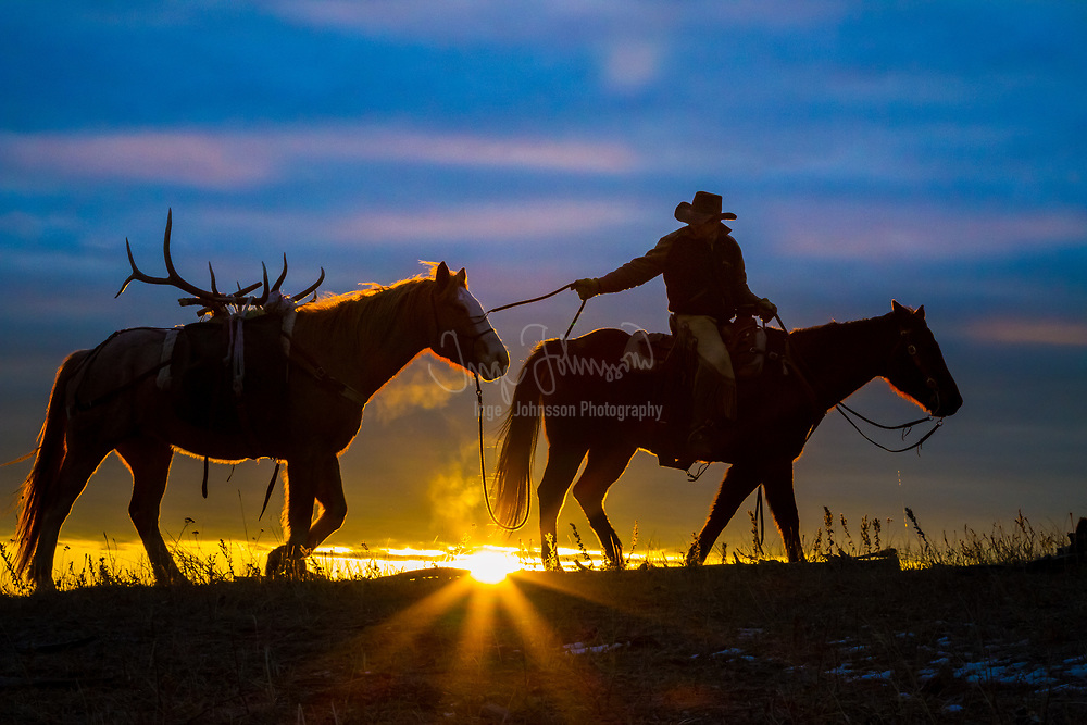 Cowboy and his horse at sunrise on a ranch in northweastern Wyoming