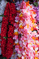 Lei is a Hawaiian word for a garland or wreath. More loosely defined, a lei is any series of objects strung together with the intent to be worn. The most popular concept of a lei in Hawaiian culture is a wreath of flowers draped around the neck presented upon arriving or leaving. This concept was popularized through tourism between the Hawaiian Islands and the continental United States in the 19th and 20th centuries..Children and sweethearts are referred to as lei and many ancient & modern songs  refer to this imagery.