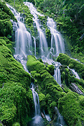 The waters of Proxy Creek tumble down a steep moss covered slope, at Oregon's Upper Proxy Falls.
