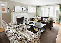 Modren living room in centuray home