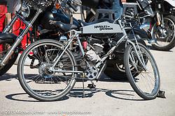Hardley-Davidson. Daytona Beach Bike Week 2015. FL, USA. Monday March 9, 2015.  Photography ©2015 Michael Lichter.