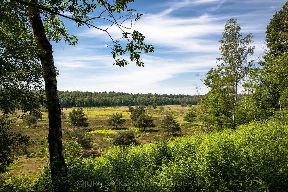 the Pionierbecken 2 in the Koenigsforest near Cologne, North Rhine-Westphalia, Germany. The Pionierbecken (pioneer ponds) are former gravel pits.<br /> <br /> Pionierbecken 2 im Koenigsforst bei Koeln, Nordrhein-Westfalen, Deutschland. Die Pionierbecken sind ehemalige Kiesgruben.