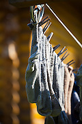 Socks hang to dry on a clothesline at the Bradley Orchard in Chugiak, Alaska.
