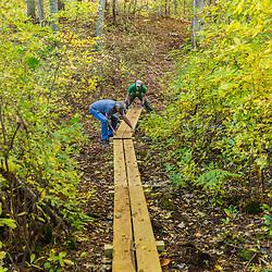 Two men work on a hiking trail in Marshfield, Massachusetts. Hoyt-Hall Preserve.