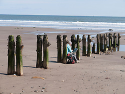 Artist painting old seaweed-covered wooden groynes on the beach at Sandsend, Whitby.