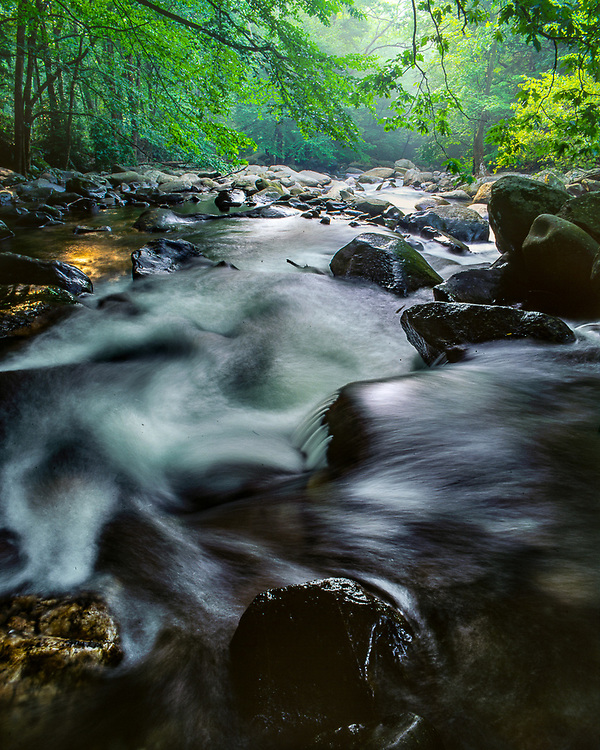 Tributary of the West Prong Little Pigeon River, Great Smoky Mountains National Park, Tennessee, USA