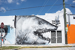 detail of a wall in the Wynwood Art District in Miami, Florida