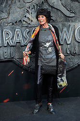 Geraldine Chaplin attends the Jurassic World: Fallen Kingdom (Jurassic World: El Reino Caido) premiere at WiZink Center on May 21, 2018 in Madrid, Spain. Photo by Archie AndrewsABACAPRESS.COM