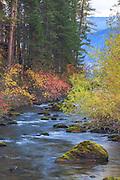Creek at Lindbergh Lake, Montana.