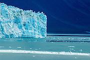 A warming glacier and melting iceberg in Alaska, USA.