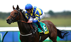File photo dated 11-10-2019 of Trueshan ridden by William Buick. Alan King does not envisage the ground being too quick for Trueshan when he defends his Qipco British Champions Long Distance Cup title at Ascot on Saturday. Issue date: Wednesday October 13, 2021.