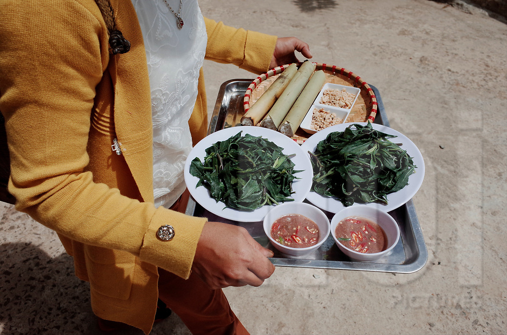 Vietnamese woman carries a tray of food, Vietnam, Southeast Asia