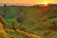 Oceania, New Zealand, Aotearoa,South Island, Golden Bay, Tanaka, Abel Tasman National Park