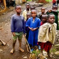Humanitarian & Social
