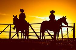 Gaúchos ao pôr-do-sol em fazenda do pampa gaúcho. FOTO: Fernando Kluwe Dias/ Agência Preview