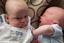 Twin babies on sofa.