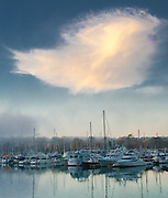 Boats in the Dana Point Harbor