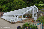 One of the restored glass houses by the Lime Kiln - there were originally 21 glasshouses (5 and 6 on the map) in the Flower Garden area of The Victorian Walled Garden at Kylemore Abbey. Only plants and flowers that were introduced to Ireland before 1901 are used in the gardens. The 6 acre garden is to the west of the Abbey originally known as a castle when it was built by Mitchell and Margaret Henry in the 1850's. The garden is on a south slope at the foot of Duchruach Mountain and facing Diamond Hill. It was chosen as the warmest and brightest spot on the estate with a mountain stream providing water. It is now a Benedictine community; open seven days a week all year round. The Abbey is located in Connemara in the west of Ireland. August