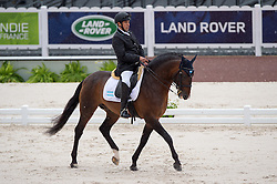 Patricio Guglialmelli Lynch, (ARG), Zizifo Interagro - Team Competition Grade III Para Dressage - Alltech FEI World Equestrian Games™ 2014 - Normandy, France.<br /> © Hippo Foto Team - Jon Stroud <br /> 25/06/14