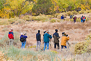 Photographers shooting dawn light in Zion Canyon, Zion National Park, Utah