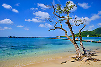 France, Martinique, Sainte-Anne, plage de Pointe Marin // France, West Indies, Martinique, Sainte-Anne, Pointe Marin beach