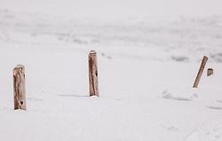THEMENBILD - Zaunpfosten ragen aus dem Tiefschnee, aufgenommen am 16. Februar 2019 in Maria Alm, Oesterreich // Fence posts protrude out of the deep snow, in Maria Alm, Austria on 2019/02/16. EXPA Pictures © 2019, PhotoCredit: EXPA/Stefanie Oberhauser