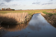 Drainage ditch, Butley marshes, Suffolk, England
