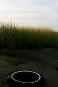 Low-tide at Floyd Bennett Field, part 2