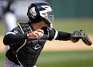 CHICAGO - APRIL 09:  Alex Avila #31 of the Chicago White Sox catches against the Cleveland Indians on April 9, 2016 at U.S. Cellular Field in Chicago, Illinois.  The White Sox defeated the Indians 7-3.  (Photo by Ron Vesely)  Subject: Alex Avila