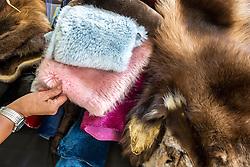 Adaka Cultural Festival 2016, Whitehorse, Yukon, Canada, Yukon First Nation Culture and Tourism Association, Kwanlin Dun Cultural Centre, Sarah McHugh furs