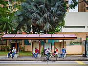 11 DECEMBER 2018 - SINGAPORE: A bicyclist rides past a bus stop with morning commuters in the Geylang neighborhood. The Geylang area of Singapore, between the Central Business District and Changi Airport, was originally coconut plantations and Malay villages. During Singapore's boom the coconut plantations and other farms were pushed out and now the area is a working class community of Malay, Indian and Chinese people. In the 2000s, developers started gentrifying Geylang and new housing estate developments were built.     PHOTO BY JACK KURTZ