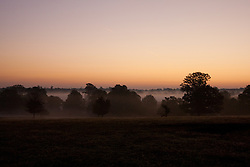 © Licensed to London News Pictures. 16/10/2011. Knole Park, Kent, UK. A cold misty Autumn morning sunrise.    Photo credit : Ian Schofield/LNP