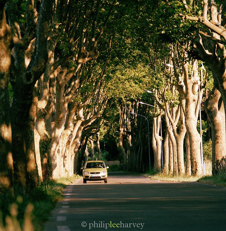 Car driving through country roads near Avignon, Provence-Alpes-Cote-D'Azur region of France