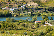 Rabelo port wine boat passing vineyards on the green hill slopes and banks of the River Douro region north of Viseu in Portugal