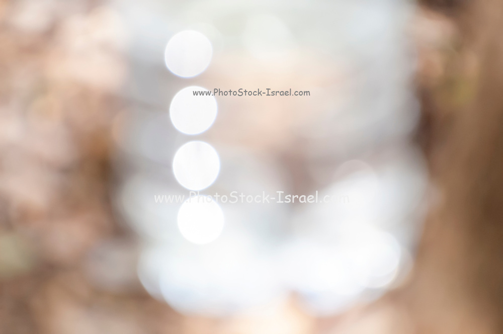 abstract out of focus photograph of plastic bottle of mineral water reflecting sunlight