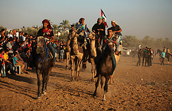 September 16, 2016 - Dair Al Balah, Gaza Strip, Palestinian Territory - Palestinians ride horses and camels during a Bedouin festival in Dair Al Balah in the central Gaza Strip September 16, 2016  (Credit Image: © Ashraf Amra/APA Images via ZUMA Wire)