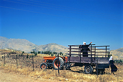Farmers - Drews