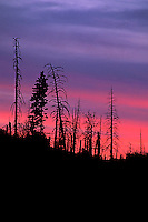 Sunset in Yosemite National Park, CA<br />