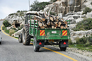 Logs of firewood on a trailer