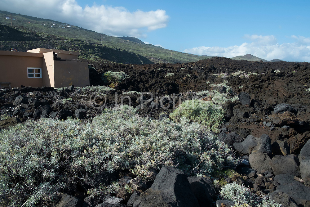 Volcanic landscape in La Salemera in La Palma, Canary Islands, Spain. La Palma, also San Miguel de La Palma, is the most north-westerly Canary Island in Spain. La Palma has an area of 706km2 making it the fifth largest of the seven main Canary Islands.